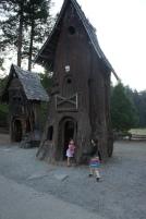 Tree House Fun